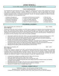 bank manager resume examples  credit union branch manager resume    credit union branch manager resume