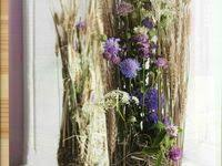 Лучших изображений доски «<b>Сухоцветы</b>»: 138 в 2019 г. | Dried ...