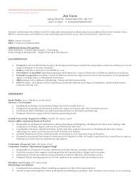 programmer sample resume sample resume templates objectives programmer sample resume entrepreneur resume berathen entrepreneur resume decorative ideas which can applied into your