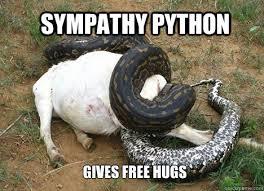 sympathy python memes | quickmeme via Relatably.com