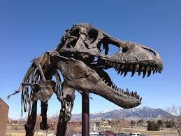 <b>Tyrannosaurus rex</b> | Smithsonian Institution
