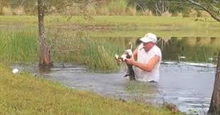 Florida man wrestles alligator to save <b>puppy</b> in dramatic video ...
