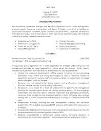 best photos of resume personal statement examples personal project manager resume summary statement