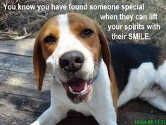 Quotes About Beagles. QuotesGram via Relatably.com