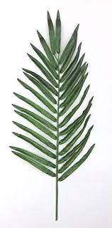 Amazon.co.jp: Set of <b>5 Artificial Palm Leaves</b>: DIY, Tools & Garden