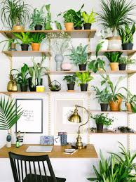 15 gorgeous ways to decorate with plants old brand new check lighting ideas won39t