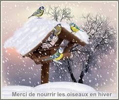 """Résultat de recherche d'images pour """"gifs oiseaux dans la neige"""""""