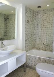 bathroom remodeling small home