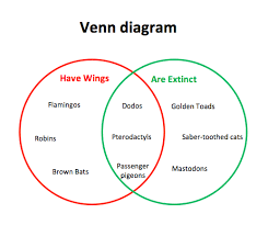 venn diagrams   microsoft word templatesvenn diagram