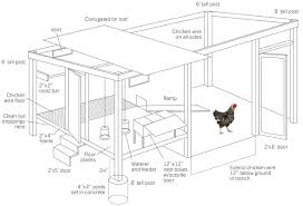 How to Build a Chicken Coop   Modern FarmerStep   Build the Frame