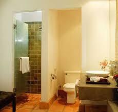 design walk shower designs: small walk in shower with glass door