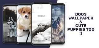 <b>Cute Dogs</b> Wallpaper | Cute puppy wallpaper - Apps on Google Play