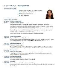 cv in english personal details resume writing resume examples cv in english personal details cv tips templates and examples for effective curriculum cv english