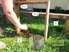 Как сделать садовою дорожку своими руками фото