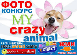 """Фотоконкурс """"My <b>CRAZY animal</b>!"""" (Победители) » uCrazy.ru ..."""