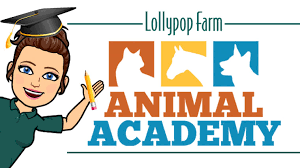 <b>Lollypop</b> Farm | Humane Society of Greater Rochester