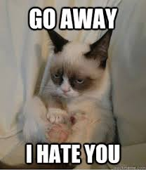 Pic > i hate you meme grumpy cat via Relatably.com