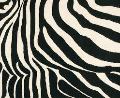 Black And White Zebra Rug  T