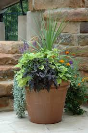 Small Picture Garden Design Garden Design with Marthaus Culinary Herb Garden
