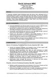 Profile For A Resume Professional Profile On Resume Paper Writing Example Of Summary Profile On A