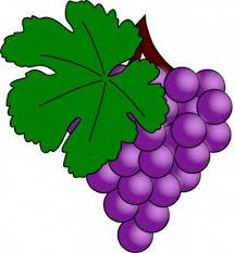 """Résultat de recherche d'images pour """"image clipart foire au vin"""""""