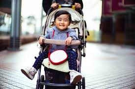 The 8 <b>Best Baby Strollers</b> of 2019