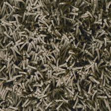 charming shag rugs in dark olive green for floor decor ideas charming shag rugs