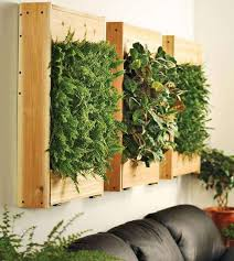 gallery outdoor living wall featuring: urban gardens living wall planters gallery
