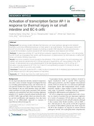 (PDF) Activation of transcription factor <b>AP</b>-<b>1</b> in response to thermal ...