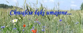 Znalezione obrazy dla zapytania foto chwalcie łąki umajone