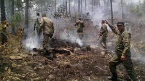 Resultado de imagen para incendios en restauracion republica dominicana