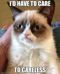 grumpy cat - Imgflip via Relatably.com
