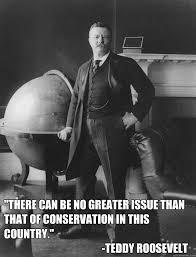 Masculine Teddy Roosevelt memes | quickmeme via Relatably.com