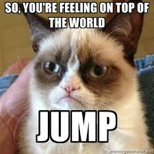 so, you're feeling on top of the world jump - Grumpy Cat 1 | Meme ... via Relatably.com