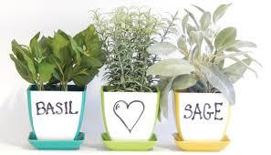 herb kit indoor