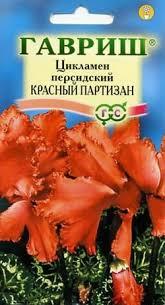 <b>Семена Цикламен</b> персидский <b>Красный партизан</b>, 3шт, Гавриш ...