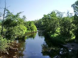 River Cocker
