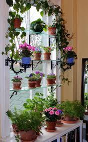 Kitchen Herb Garden Design Kitchen Winning Shelf Window Herb Kitchen Garden Basil Parsley
