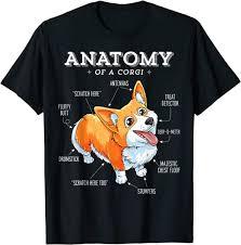 Anatomy of a Corgi <b>Funny Corgis</b> Dog Puppy T-Shirt: Amazon.de ...