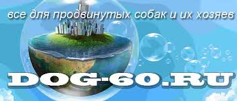 <b>Охлаждающая косынка</b> для <b>собак</b> - Интернет-магазин Dog60 ...