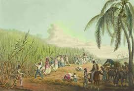 slavery abolition and social justice detailed information am view images slaveryabolitionandsocialjustice 06 jpg