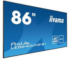 <b>iiyama</b>