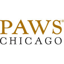How <b>Cats</b> Age | PAWS Chicago