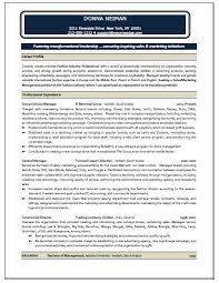 Sales and Marketing Manager Resume Sample   Resume Writing Service