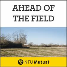 Ahead Of The Field