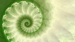 Image result for fibonacci images