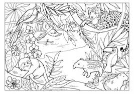 Small Picture Jungle Creatures Coloring Coloring Pages