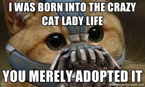 I was born into the crazy cat lady life You merely adopted it ... via Relatably.com
