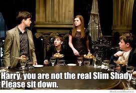 Harry You Are Not The Real Slim Shady | WeKnowMemes via Relatably.com