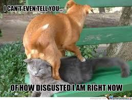 Teabag Memes. Best Collection of Funny Teabag Pictures via Relatably.com